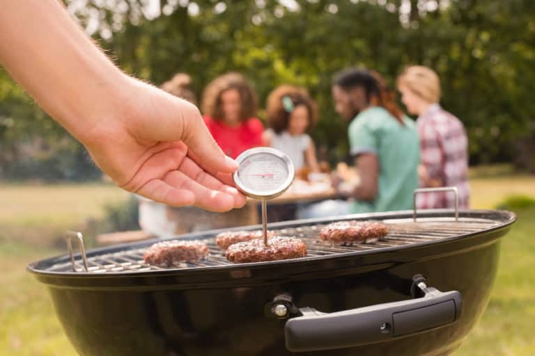 Meat Thermometer on BBQ