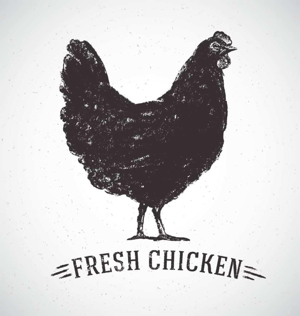 Fresh chicken logo