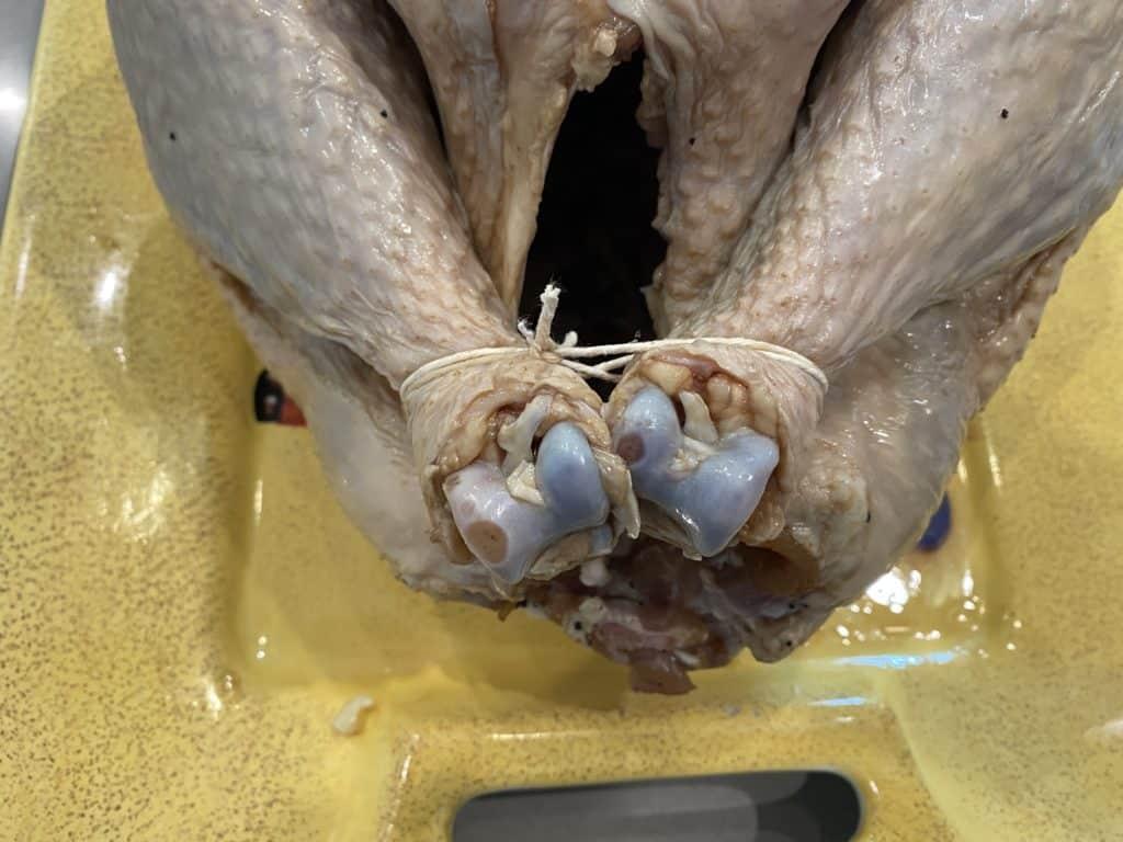 Turkey Legs Tied Together